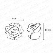 rose-misure_grande